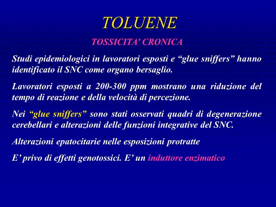 TOLUENE TOSSICITA' CRONICA