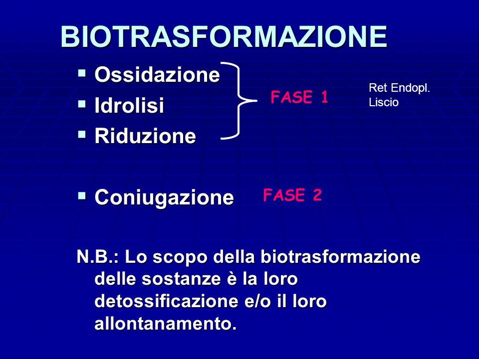 BIOTRASFORMAZIONE Ossidazione Idrolisi Riduzione Coniugazione