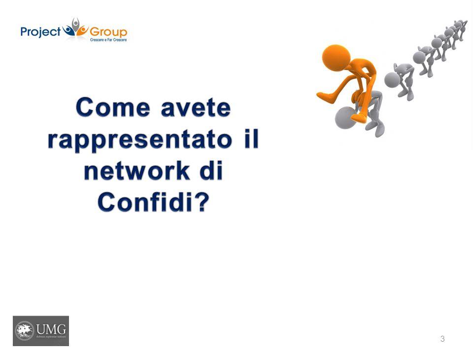 Come avete rappresentato il network di Confidi