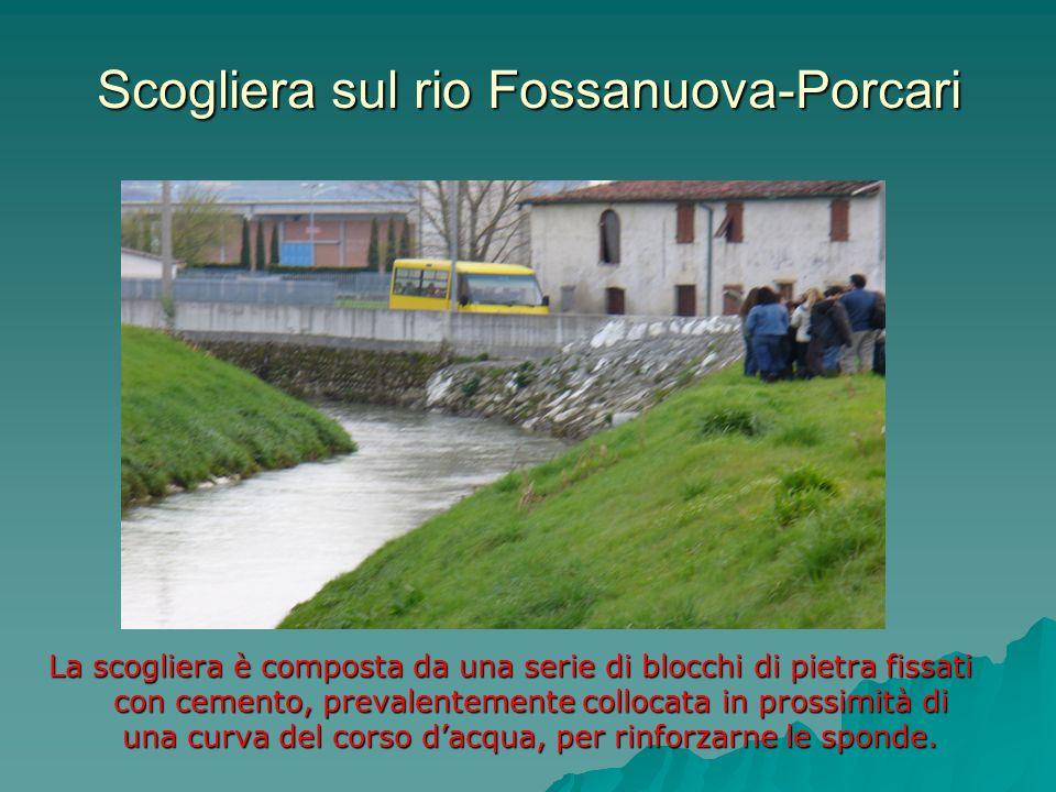 Scogliera sul rio Fossanuova-Porcari