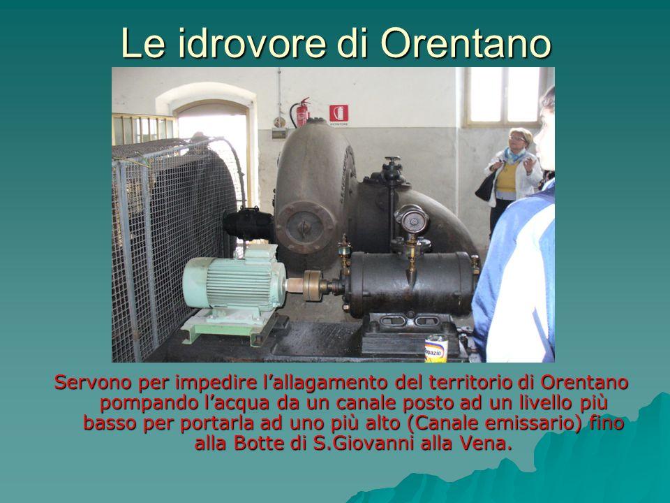 Le idrovore di Orentano