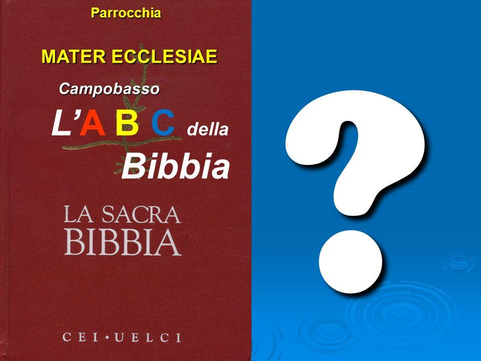 Parrocchia MATER ECCLESIAE Campobasso L'A B C della Bibbia