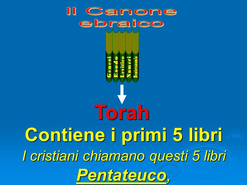 Torah Contiene i primi 5 libri