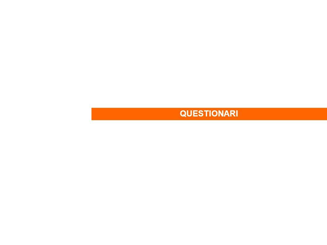 QUESTIONARI