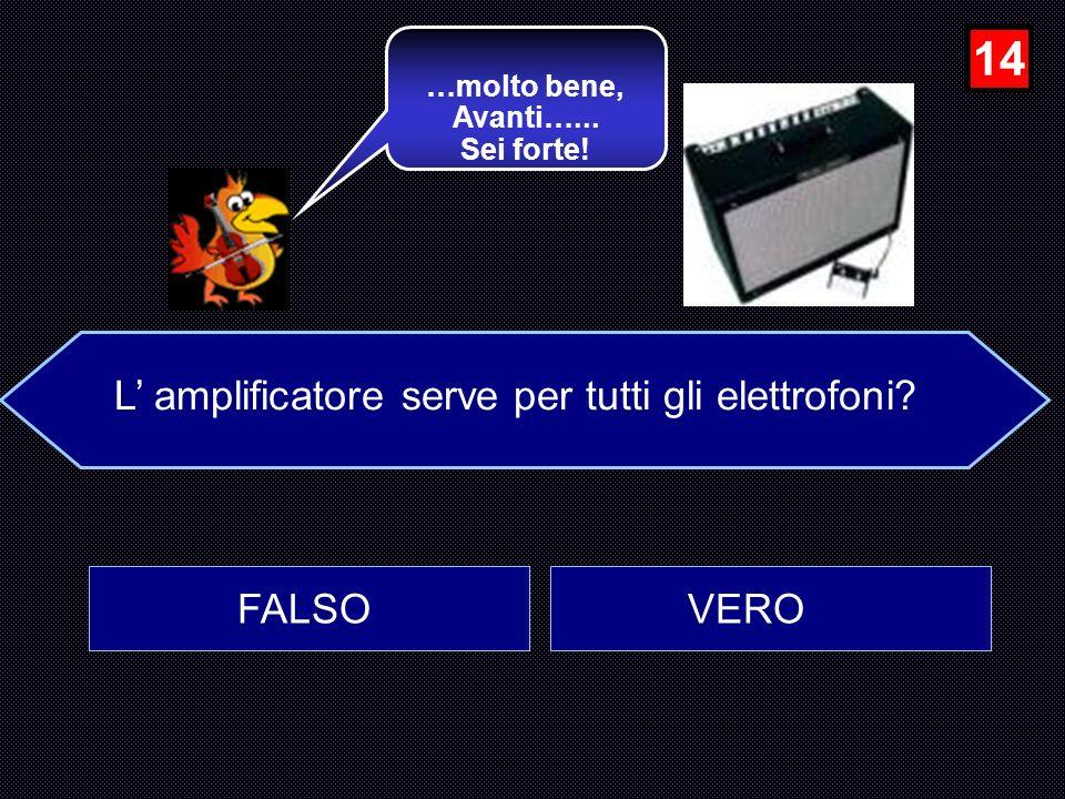 L' amplificatore serve per tutti gli elettrofoni