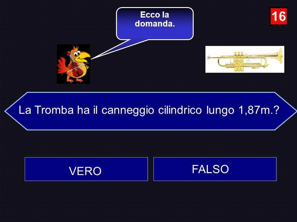 La Tromba ha il canneggio cilindrico lungo 1,87m.