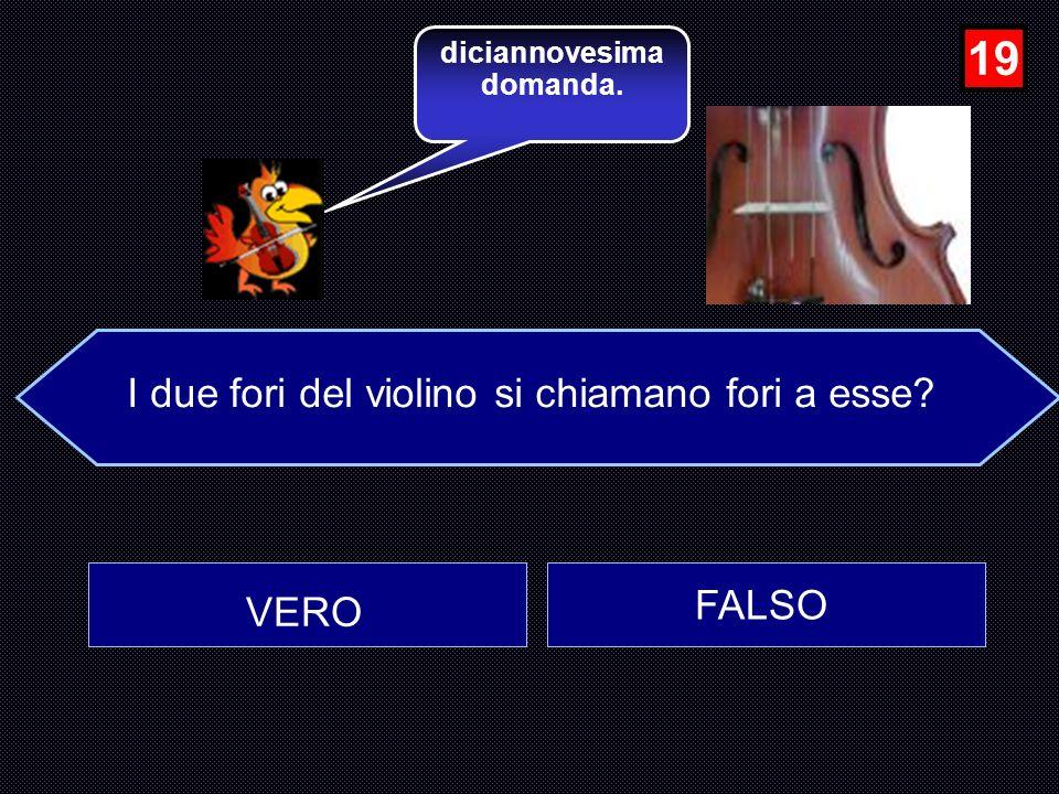 I due fori del violino si chiamano fori a esse
