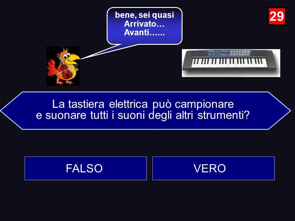 29 La tastiera elettrica può campionare