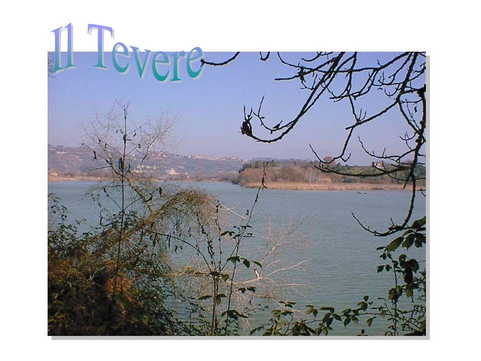 Il Tevere