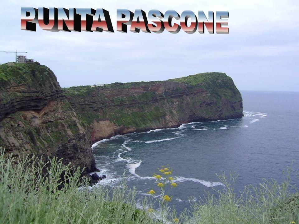 PUNTA PASCONE