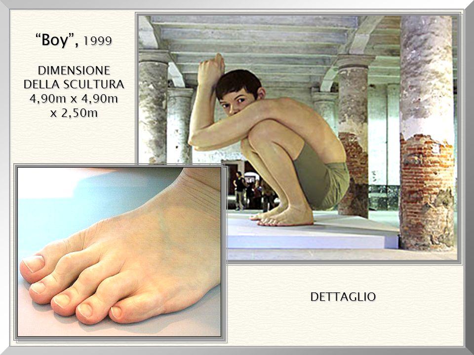 Boy , 1999 DIMENSIONE DELLA SCULTURA 4,90m x 4,90m x 2,50m DETTAGLIO
