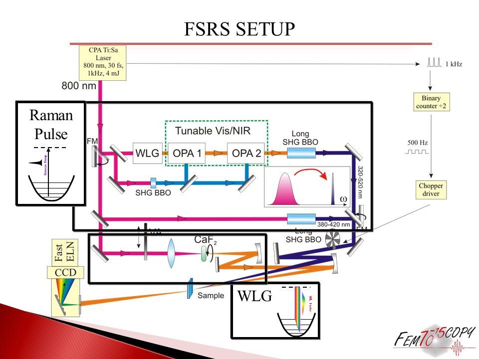 FSRS SETUP Raman Pulse Raman Pump WLG WL Probe