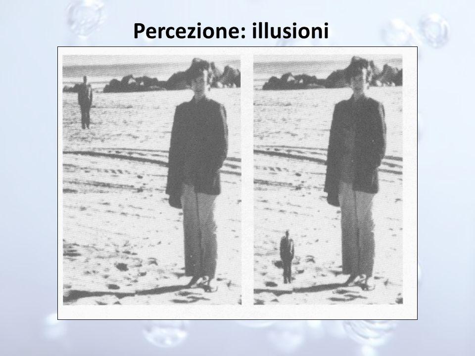 Percezione: illusioni