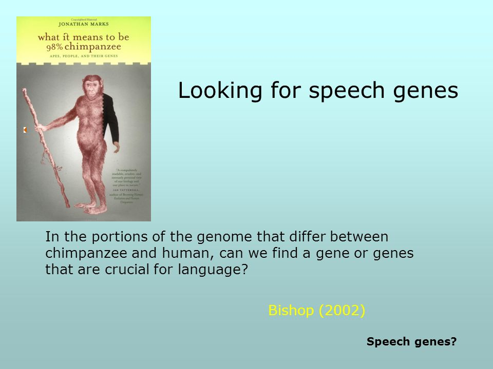 Looking for speech genes