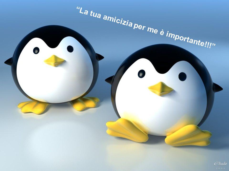 La tua amicizia per me è importante!!!