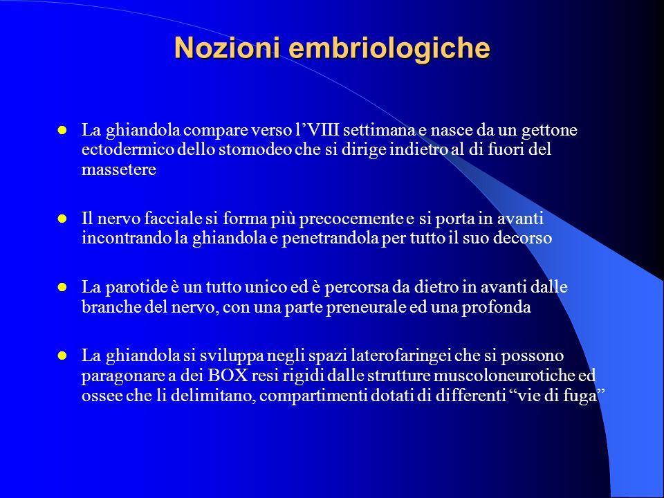 Nozioni embriologiche