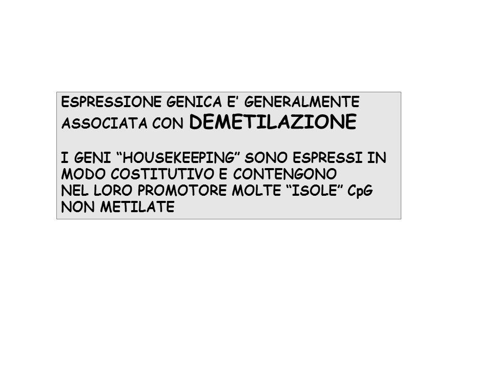 ESPRESSIONE GENICA E' GENERALMENTE