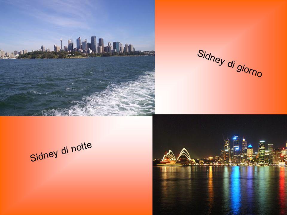 Sidney di giorno Sidney di notte