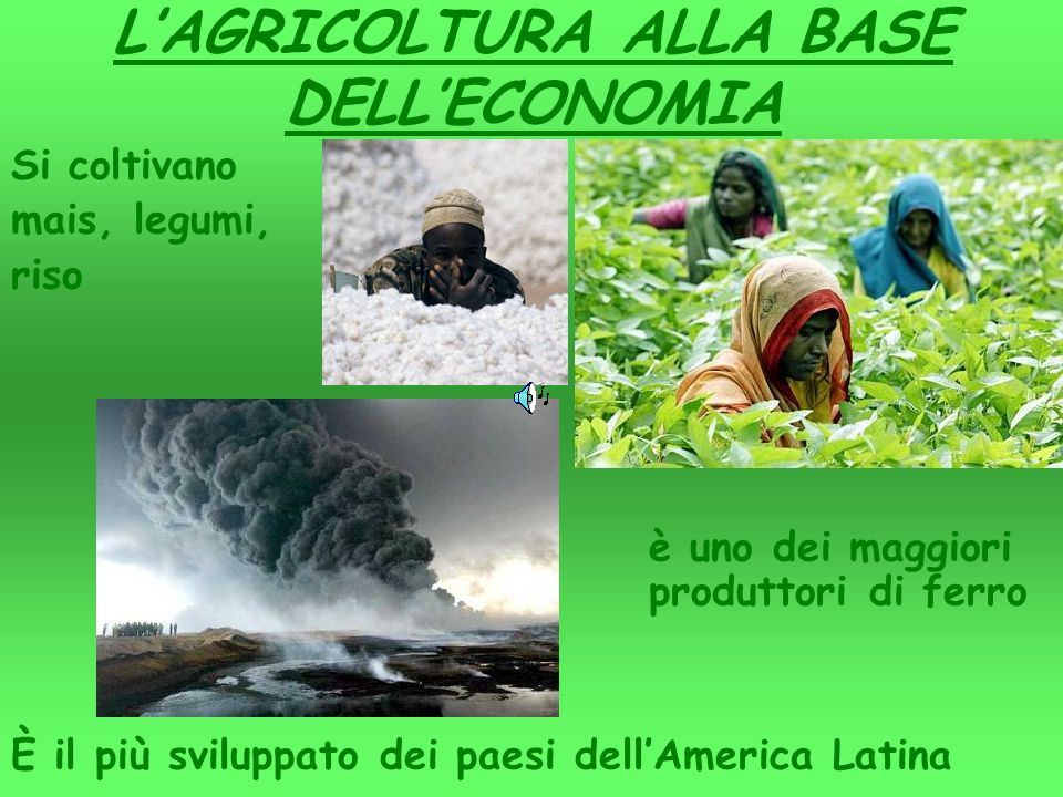 L'AGRICOLTURA ALLA BASE DELL'ECONOMIA