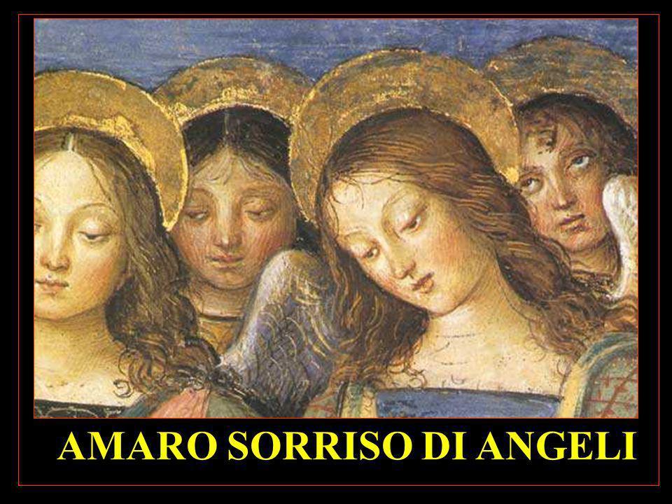 AMARO SORRISO DI ANGELI