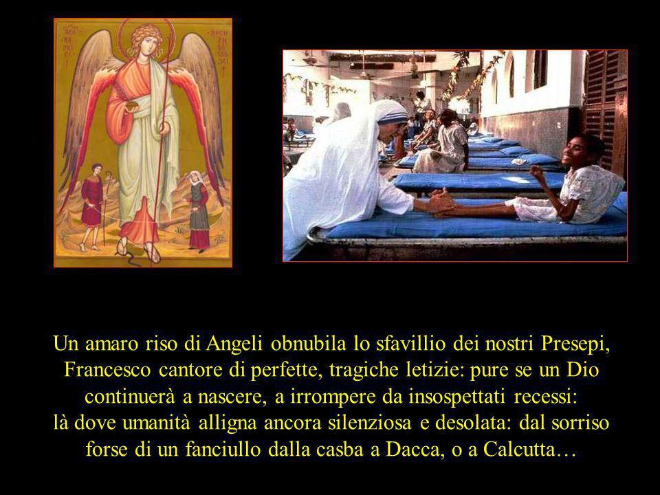 Un amaro riso di Angeli obnubila lo sfavillio dei nostri Presepi, Francesco cantore di perfette, tragiche letizie: pure se un Dio continuerà a nascere, a irrompere da insospettati recessi: