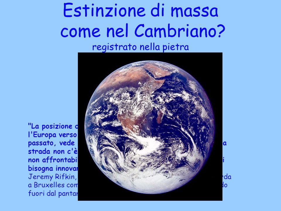 Estinzione di massa come nel Cambriano registrato nella pietra