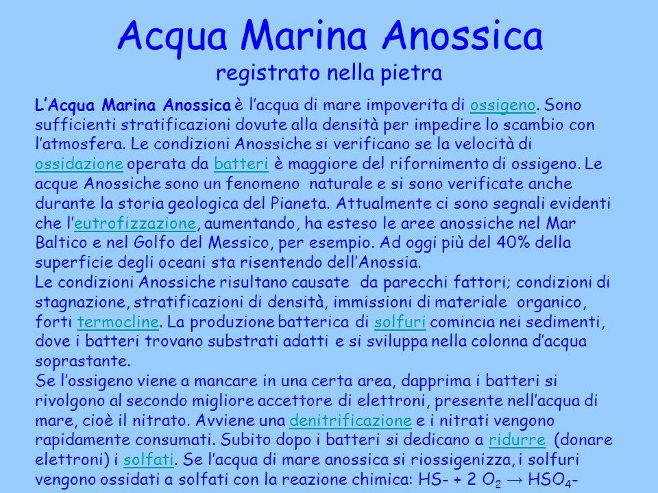 Acqua Marina Anossica registrato nella pietra