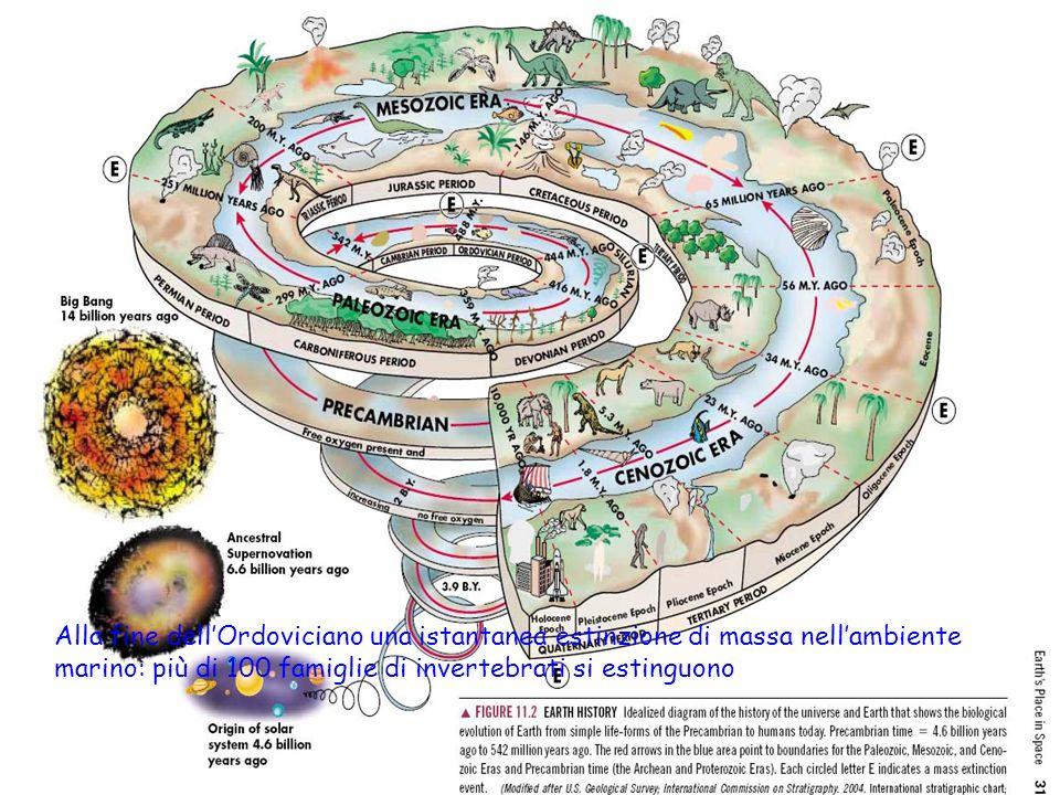 Estinzione di Massa nel Cambriano