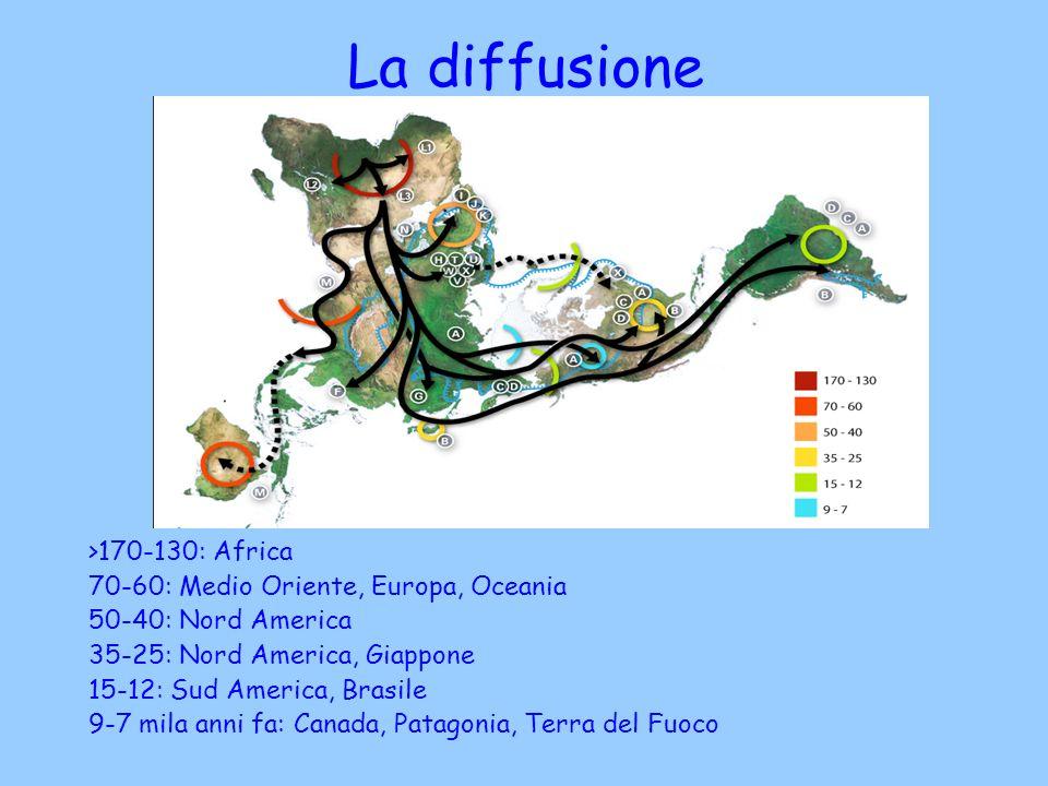 La diffusione >170-130: Africa
