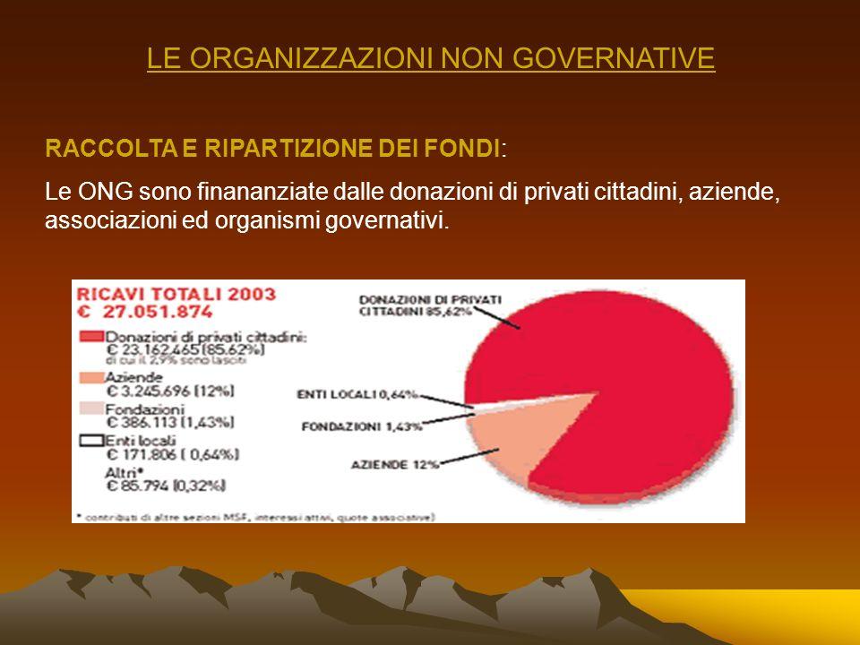 LE ORGANIZZAZIONI NON GOVERNATIVE