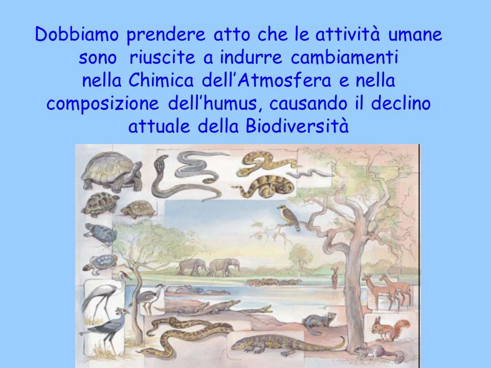 Dobbiamo prendere atto che le attività umane sono riuscite a indurre cambiamenti nella Chimica dell'Atmosfera e nella composizione dell'humus, causando il declino attuale della Biodiversità