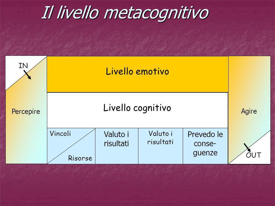 Il livello metacognitivo