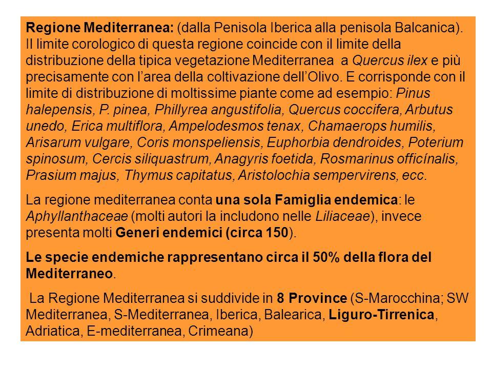 Regione Mediterranea: (dalla Penisola Iberica alla penisola Balcanica)