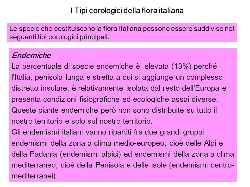 I Tipi corologici della flora italiana