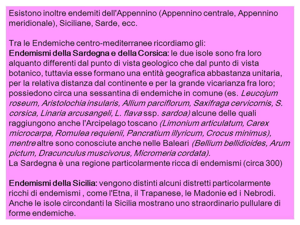 Esistono inoltre endemiti dell Appennino (Appennino centrale, Appennino meridionale), Siciliane, Sarde, ecc.