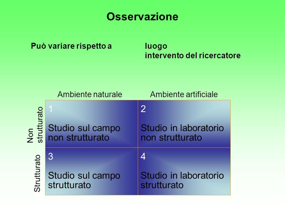 Osservazione 1 Studio sul campo non strutturato 2
