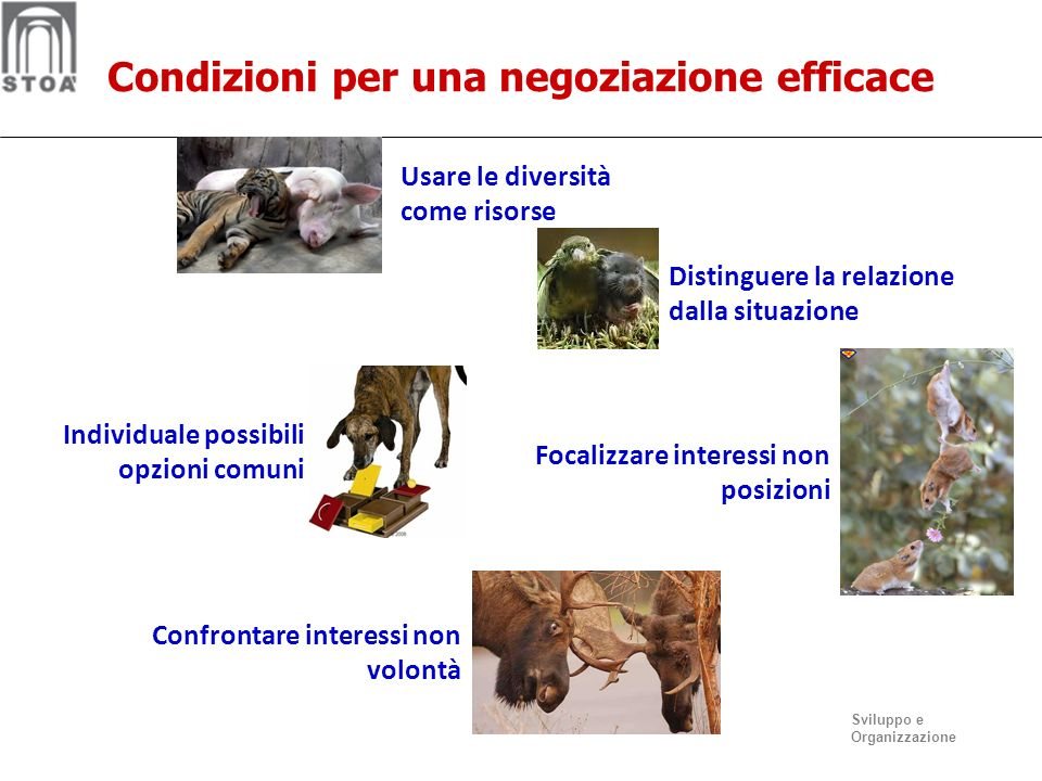 Condizioni per una negoziazione efficace
