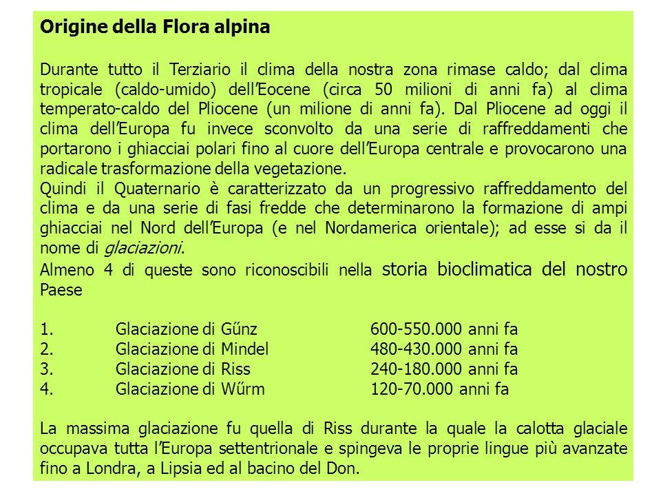 Origine della Flora alpina