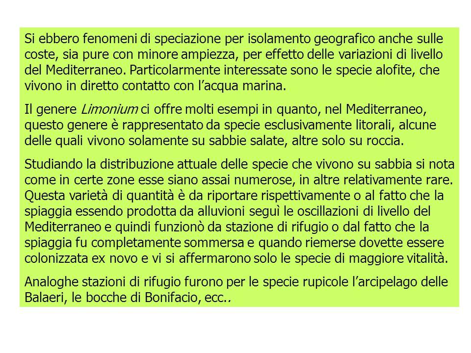Si ebbero fenomeni di speciazione per isolamento geografico anche sulle coste, sia pure con minore ampiezza, per effetto delle variazioni di livello del Mediterraneo. Particolarmente interessate sono le specie alofite, che vivono in diretto contatto con l'acqua marina.