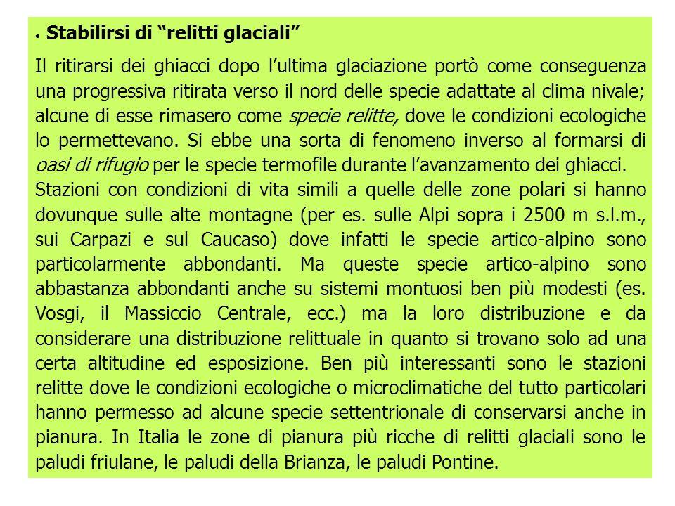· Stabilirsi di relitti glaciali