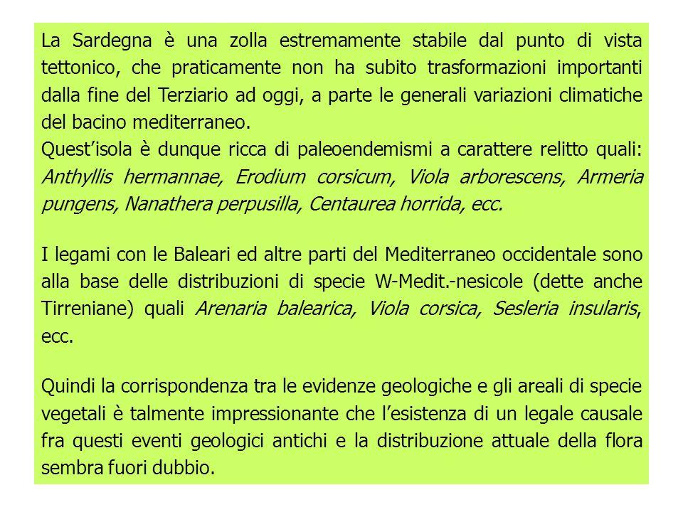 La Sardegna è una zolla estremamente stabile dal punto di vista tettonico, che praticamente non ha subito trasformazioni importanti dalla fine del Terziario ad oggi, a parte le generali variazioni climatiche del bacino mediterraneo.