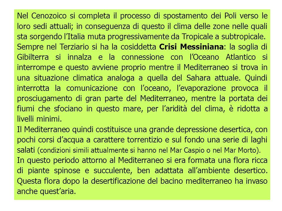 Nel Cenozoico si completa il processo di spostamento dei Poli verso le loro sedi attuali; in conseguenza di questo il clima delle zone nelle quali sta sorgendo l'Italia muta progressivamente da Tropicale a subtropicale.