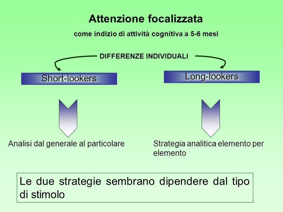 Attenzione focalizzata come indizio di attività cognitiva a 5-6 mesi
