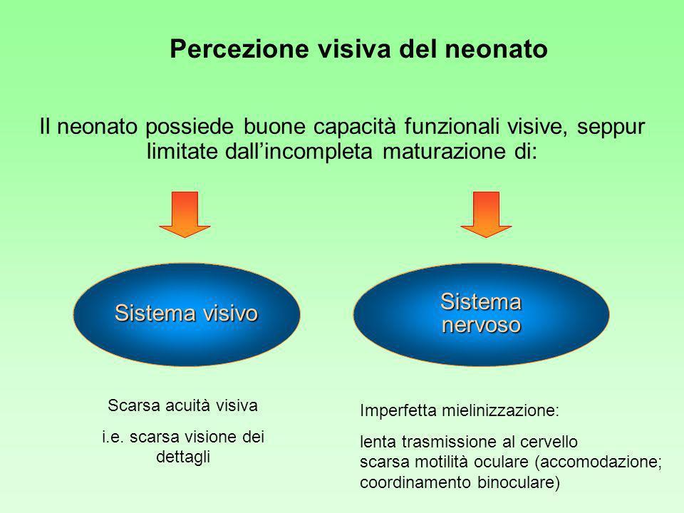 Percezione visiva del neonato