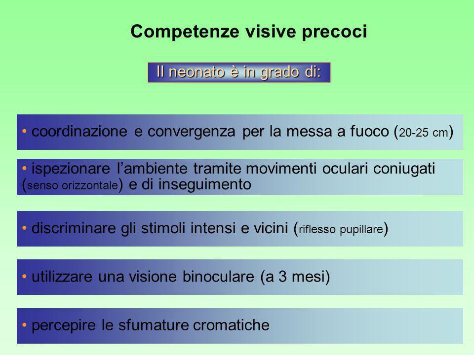 Competenze visive precoci