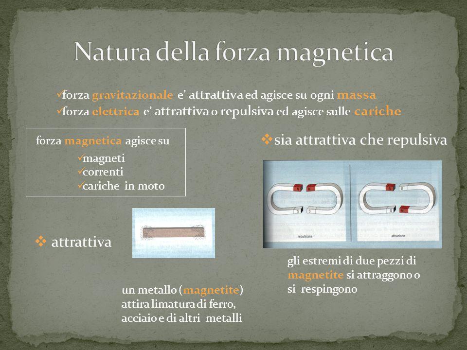 Natura della forza magnetica