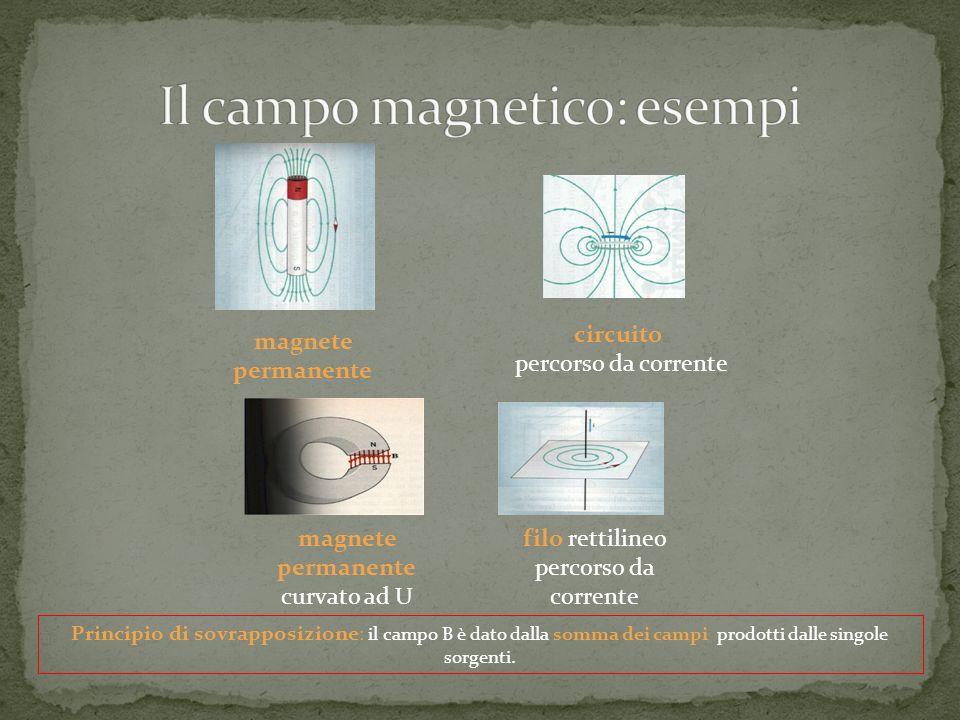 Il campo magnetico: esempi