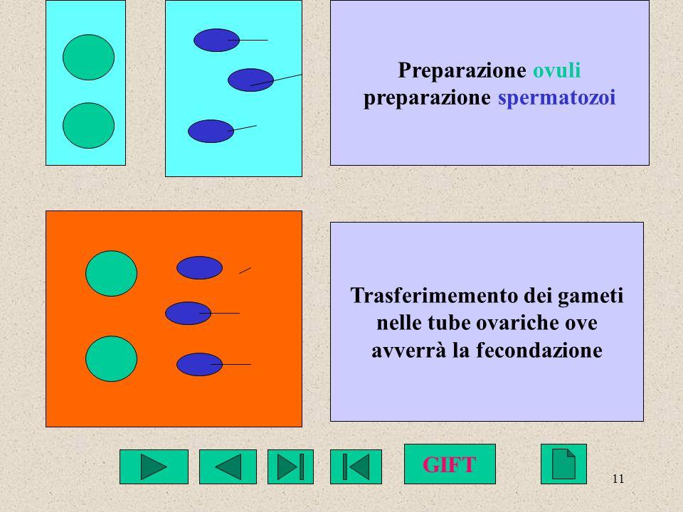 preparazione spermatozoi