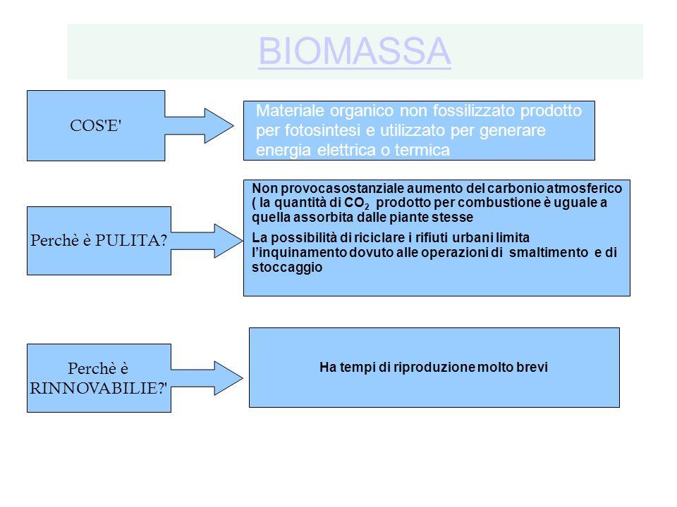 BIOMASSA COS E Materiale organico non fossilizzato prodotto per fotosintesi e utilizzato per generare energia elettrica o termica.