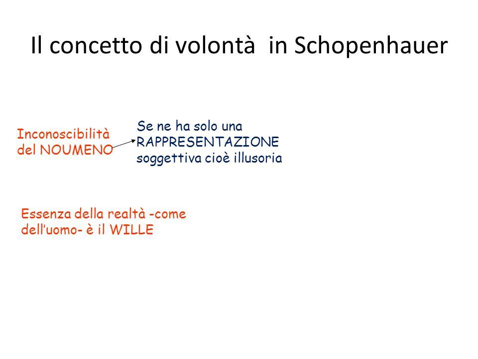 Il concetto di volontà in Schopenhauer
